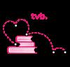 Tvb biblioteche trevigiane